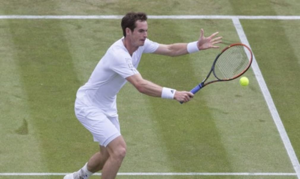 Andy Murray advanced to the quarter-finals at Wimbledon for the seventh successive year after defeating Kevin Anderson in straight sets