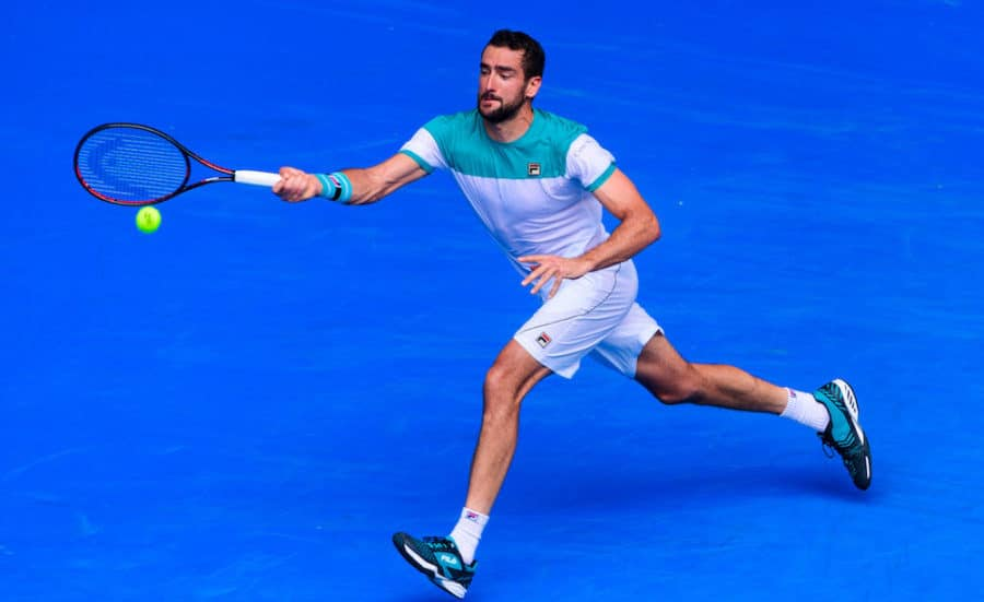 Marin Cilic salutes crowd