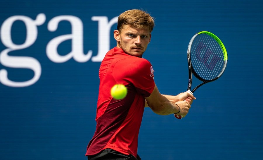 David Goffin backhand