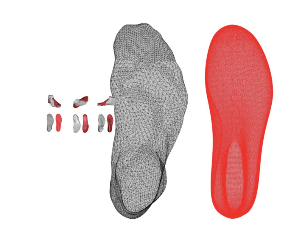 Roger Federer Foot Scan